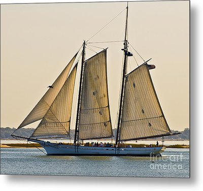 Scenic Schooner Metal Print by Al Powell Photography USA