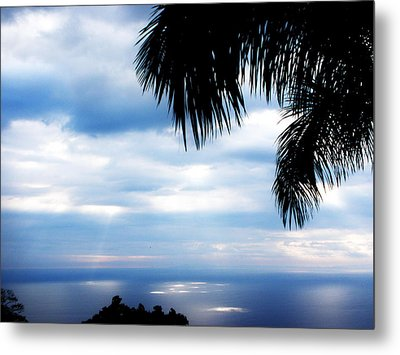 Sea Sky And Palm Tree Metal Print by Rosvin Des Bouillons