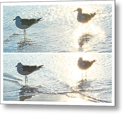 Seagulls In A Shimmer Two Views By Olivia Novak Metal Print by Olivia Novak