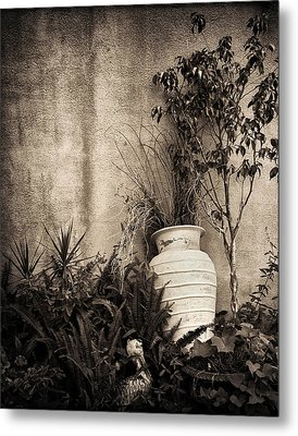 Secret Garden Metal Print by Mario Celzner