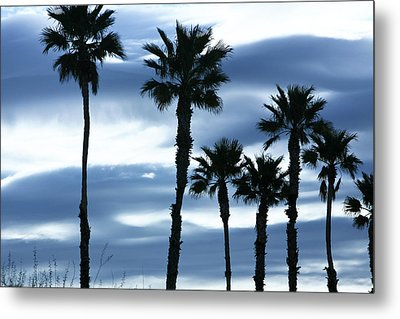 Seven Palms Metal Print by Gilbert Artiaga