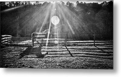 Shadow Metal Print by Darrin Doss
