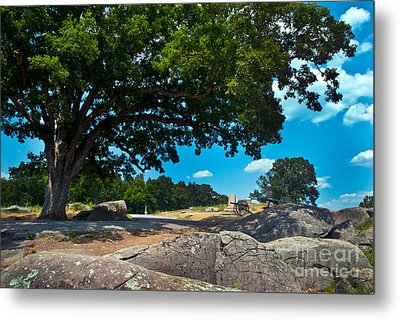 Shady Hilltop Metal Print by Paul W Faust -  Impressions of Light