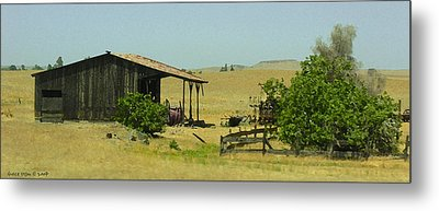 Shed In A Field Of Gold Metal Print by Grace Dillon
