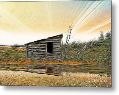 Shed In The Field Metal Print by Vickie Emms