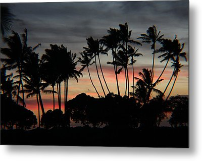 Shooting The Sunset Metal Print by Raquel Amaral