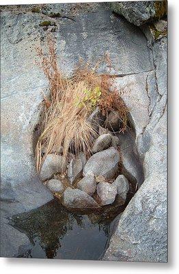 Sierra Nevada Forest 2 Metal Print by Naxart Studio