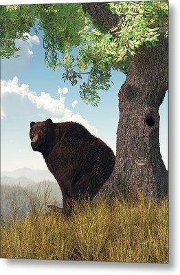 Sitting Bear Metal Print by Daniel Eskridge
