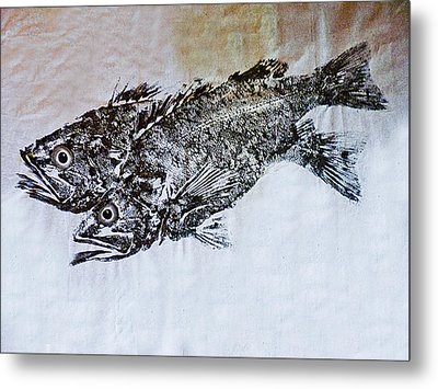 Snapper Metal Print by William Fields
