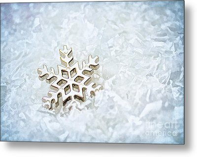Snowflake Metal Print by Darren Fisher