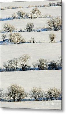 Snowy Landscape Metal Print by Jeremy Woodhouse