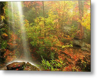 Sounds Of Autumn Metal Print by Darren Fisher