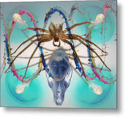 Spider Dna Metal Print by Adam Long
