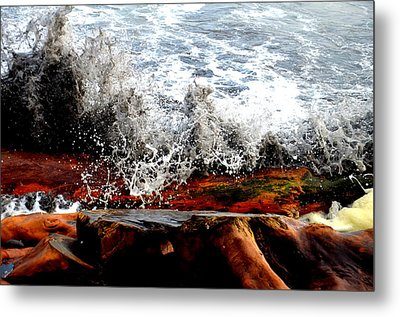 Splash On The Wood Metal Print by Nelly Avraham