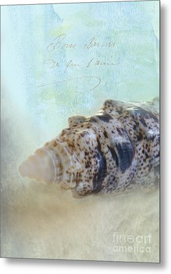 Spotted Auger Seashell Metal Print by Betty LaRue