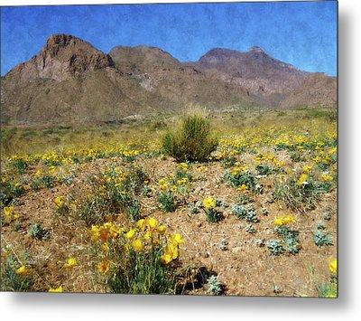 Spring Bloom Franklin Mountains Metal Print by Kurt Van Wagner