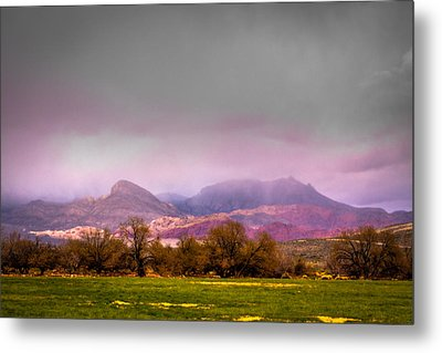 Spring Mountain Ranch In Red Rock Canyon Metal Print by David Patterson