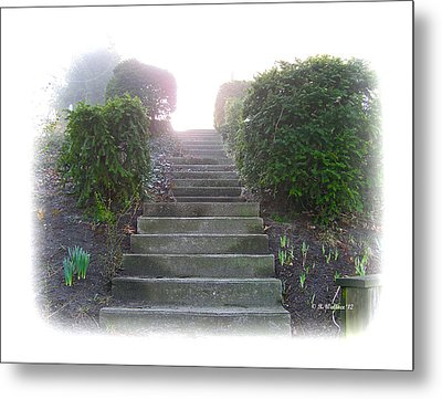 Stairway To A New Beginning Metal Print by Brian Wallace