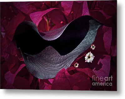Standing Out Metal Print by Gwyn Newcombe
