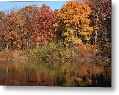 Sterling Pond Metal Print by Lyle Hatch