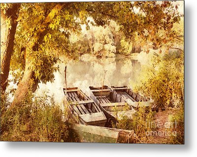 Still Life At The Lake Metal Print by Odon Czintos