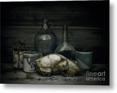 Still Life With Bear Skull Metal Print by Priska Wettstein
