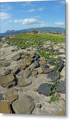 Stones On Sand At Punta Vincente Roca Metal Print by Sami Sarkis