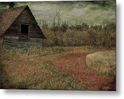 Strawberry Lane  Metal Print by JC Photography and Art