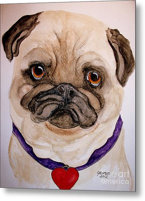 Studley Has A Heart Metal Print by Carol Grimes
