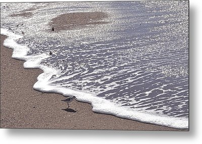 Summer Shimmer Metal Print by Cindy Lee Longhini
