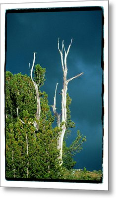 Summer Storm - Tuolumne Meadows Metal Print by Noah Brooks