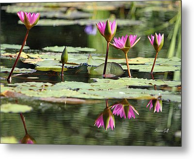 Summertime Magic Metal Print by Suzanne Gaff