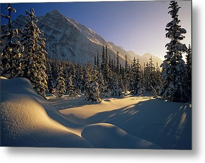 Sun Setting Behind Trees And Mountain Metal Print by Mike Grandmailson