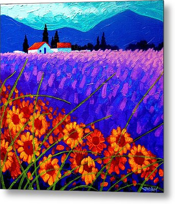 Sunflower Vista Metal Print by John  Nolan