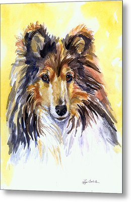 Sunny Sheltie Metal Print by Lyn Cook