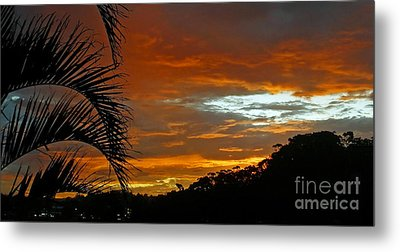 Sunset Behind The Palms Metal Print by Kaye Menner