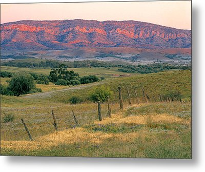 Sunset Glow On Flinders Ranges In Moralana Drive, South Australia Metal Print by Peter Walton Photography