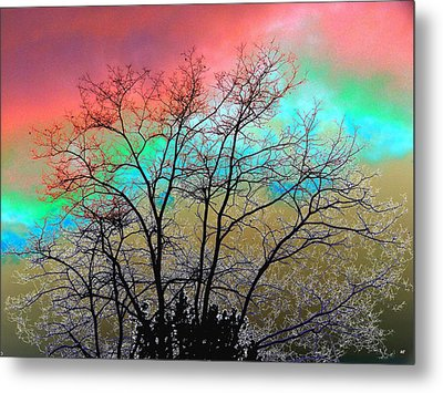 Surreal Winter Sky Metal Print by Will Borden