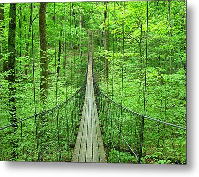 Suspension Bridge Metal Print by Daniel Muller