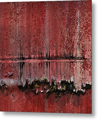 Swamp With Sin Metal Print by JC Photography and Art