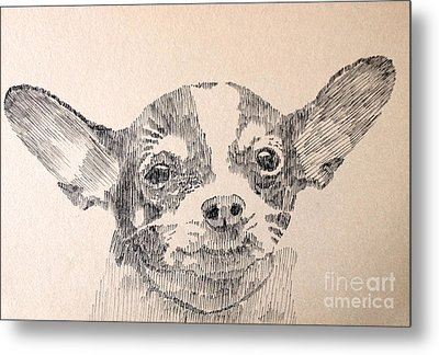 Sweet Chi Metal Print by Robbi  Musser
