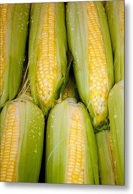 Sweet Corn Metal Print by Jen Morrison