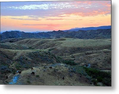 Sweet So Cal Sunset Metal Print by Lynn Bauer