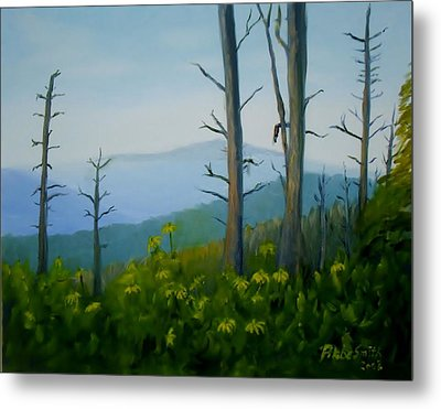 Tennessee Mts. Metal Print by Phebe Smith