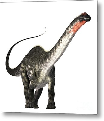 The Apatosaurus Dinosaur Metal Print by Corey Ford