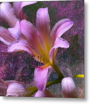 The Beauty Of Pollination Metal Print by J Larry Walker