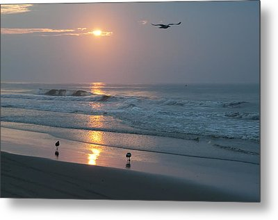 The Best Way To Start The Day Metal Print by Bill Cannon