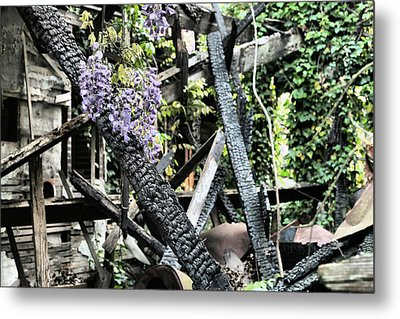 The Big Picture Metal Print by JC Findley