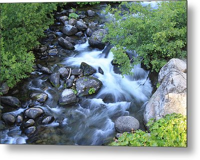 The Creek Metal Print by Nance Eakins