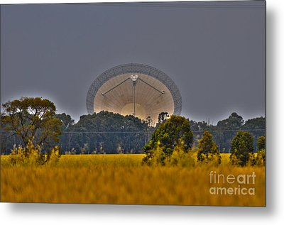 The Dish Metal Print by Joanne Kocwin